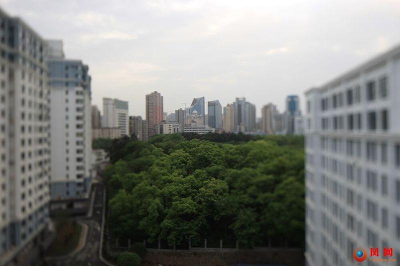 由你掌镜  摄影 城市森林
