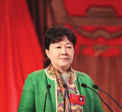 政府工作报告 湖南团女代表 两会