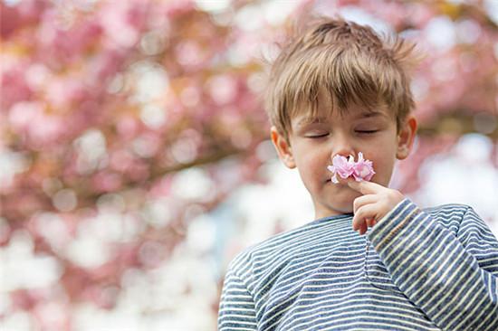婴幼儿 家庭护理 皮肤过敏 花粉过敏 宝宝过敏