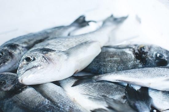 食物中毒 组胺中毒 鱼